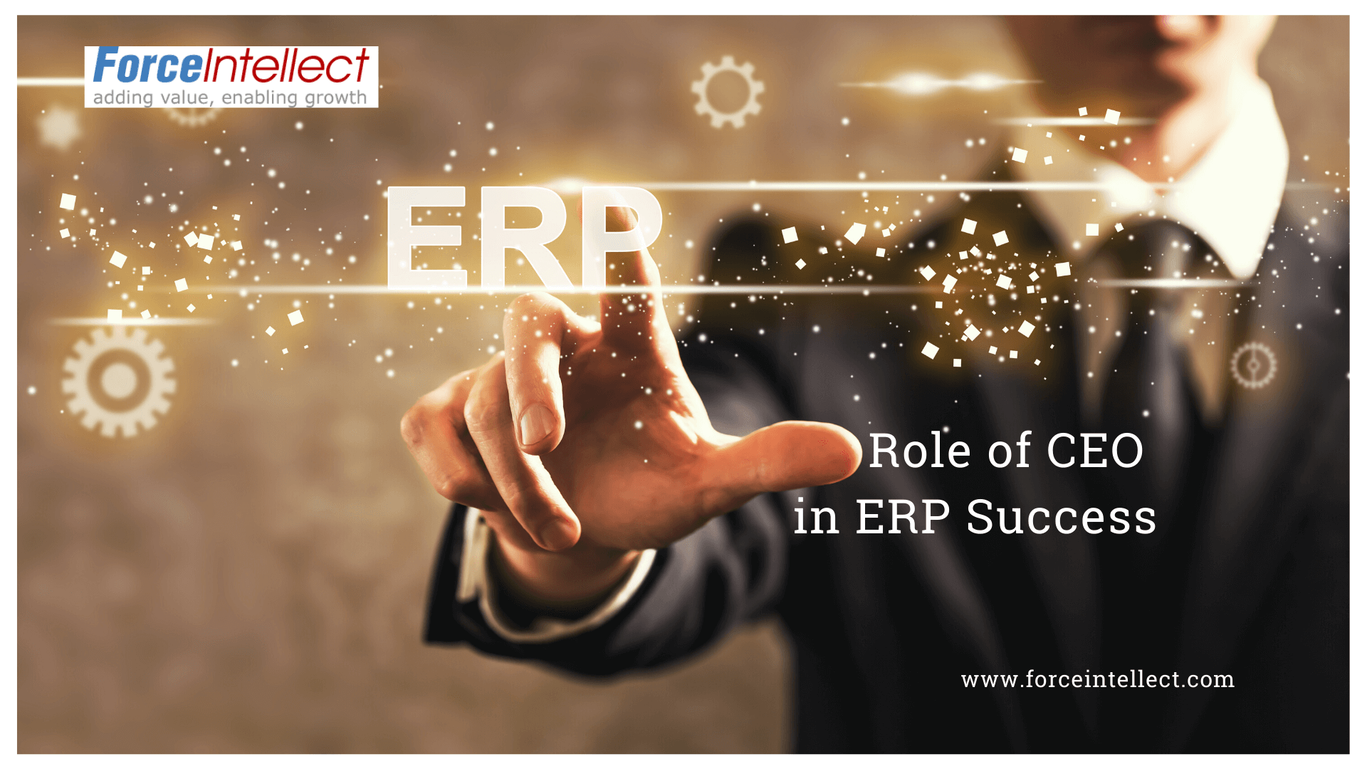 The Role of the CEO in ERP Success